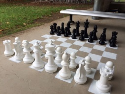 New Giant Chess Board